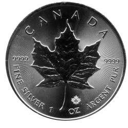 Maple Leaf Silber Die Silberanlagemünze Mit Der Höchsten Auflage